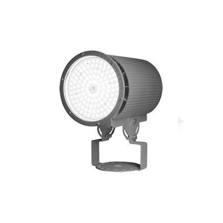 Светодиодный прожектор ДСП 02-135-50-Д120 IP66