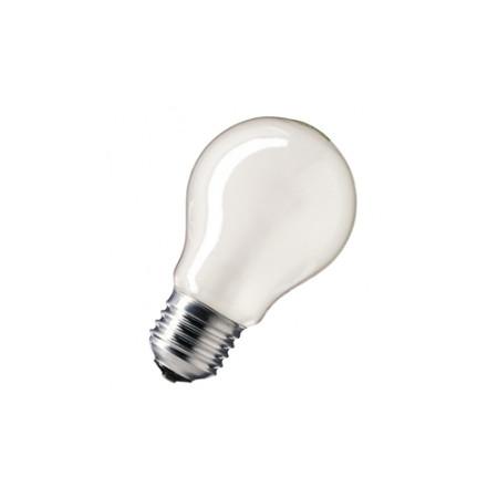 Лампа накаливания 25W E27 матовая