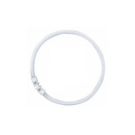 Люминесцентная лампа кольцевая Osram FC 40 W/830 T5 2GX13, D300mm