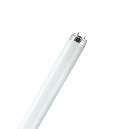 Люминесцентная лампа T8 Osram L 18 W/640 G13, 590 mm