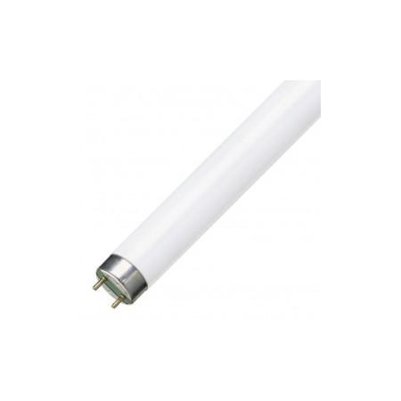Люминесцентная лампа T8 Osram L 18 W/830 PLUS ECO RUS G13, 590 mm